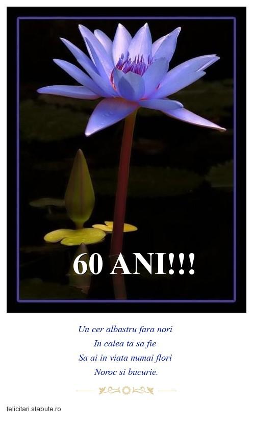 Poza felicitare 60 ANI!!!
