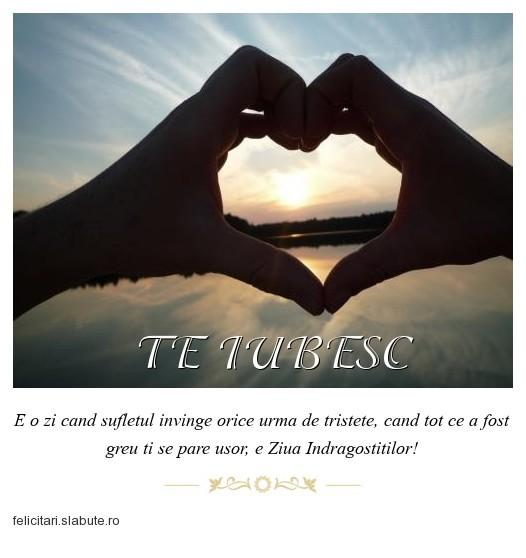 Poza felicitare TE IUBESC