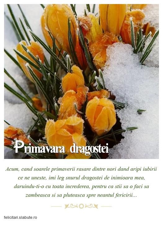 Poza felicitare Primavara dragostei...