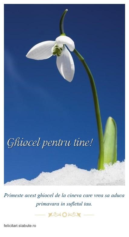 Poza felicitare Ghiocel pentru tine!