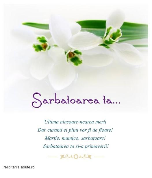 Poza felicitare Sarbatoarea ta...