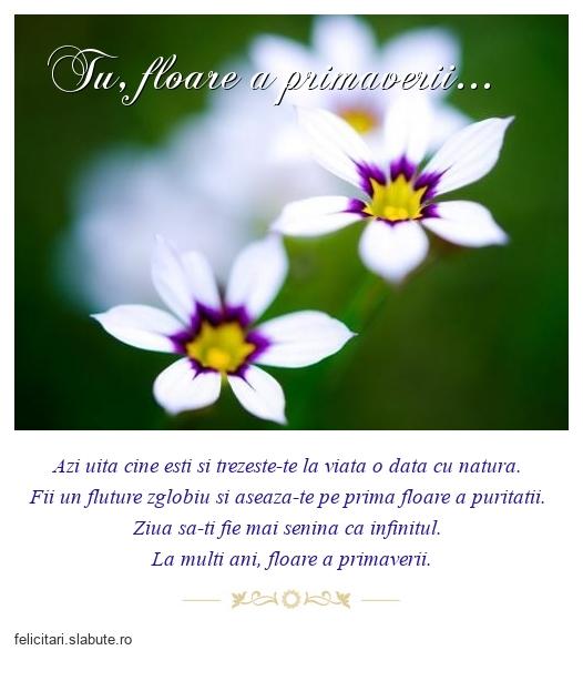 Tu, floare a primaverii...
