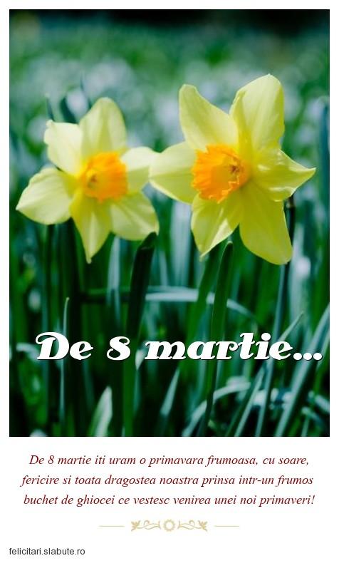 Poza felicitare De 8 martie...