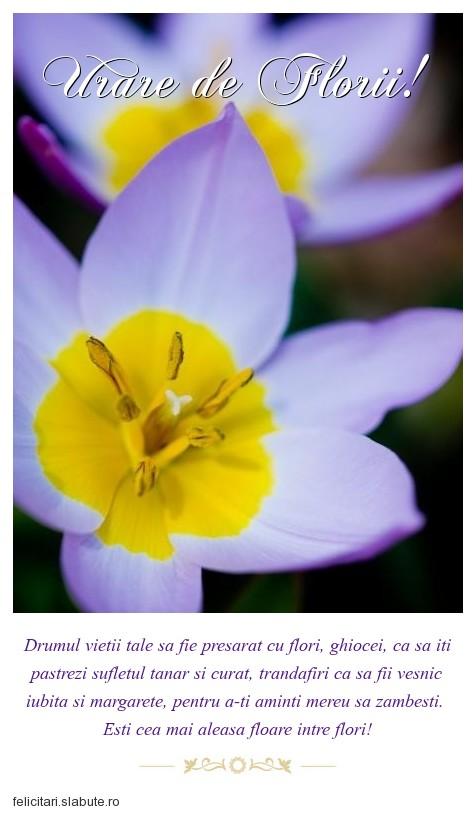 Poza felicitare Urare de Florii!