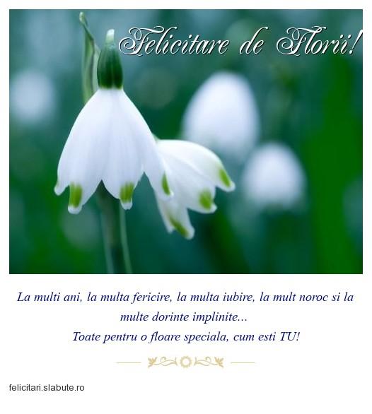 Poza felicitare Felicitare de Florii!