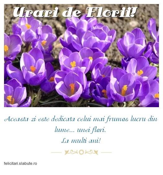 Poza felicitare Urari de Florii!