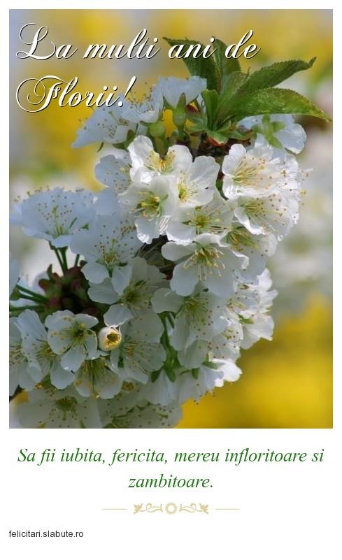 Poza felicitare La multi ani de Florii!