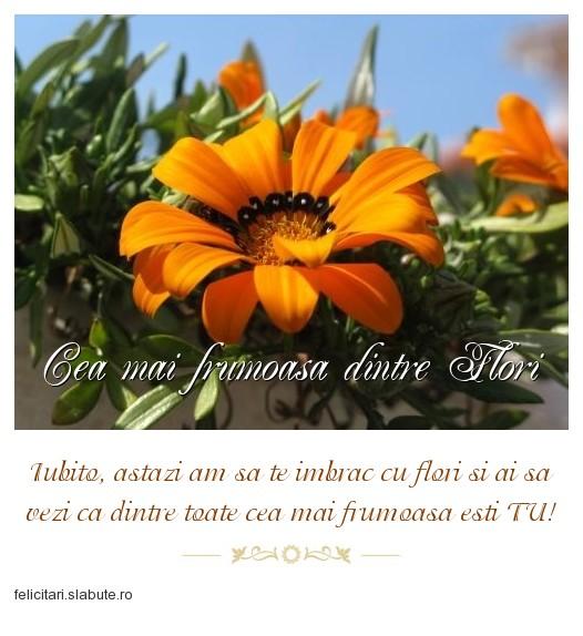 Poza felicitare Cea mai frumoasa dintre Flori