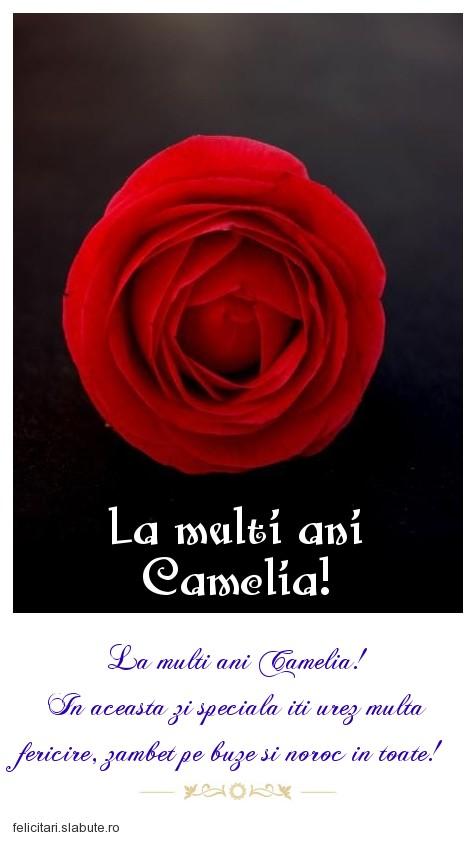 Poza felicitare La multi ani Camelia!