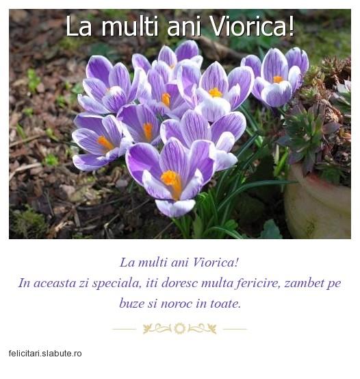 Poza felicitare La multi ani Viorica!