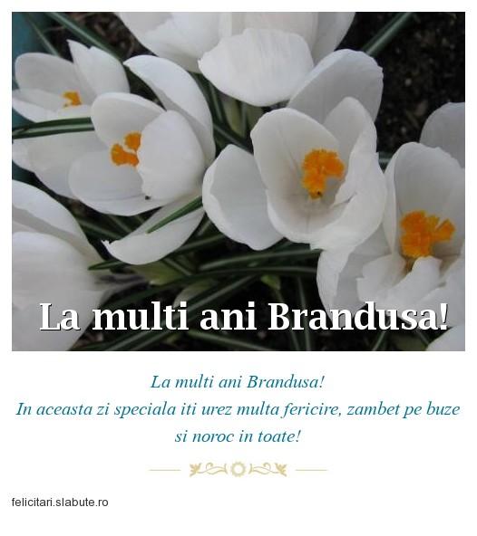 Poza felicitare La multi ani Brandusa!