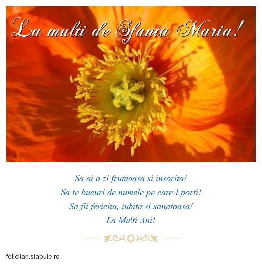 Poza felicitare La multi de Sfanta Maria!