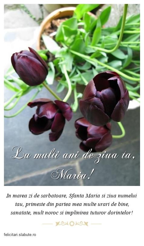 La multi ani de ziua ta, Maria!