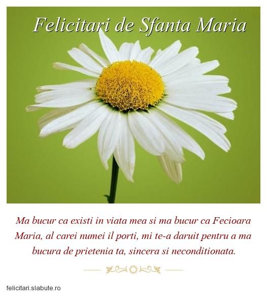 Poza felicitare Felicitari de Sfanta Maria