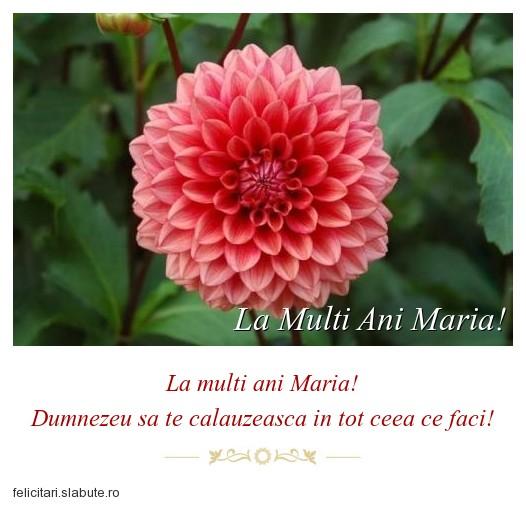 Poza felicitare La Multi Ani Maria!