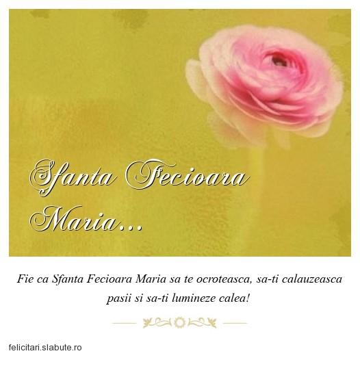 Poza felicitare Sfanta Fecioara Maria...