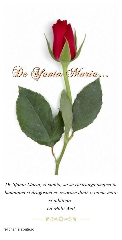 Poza felicitare De Sfanta Maria...