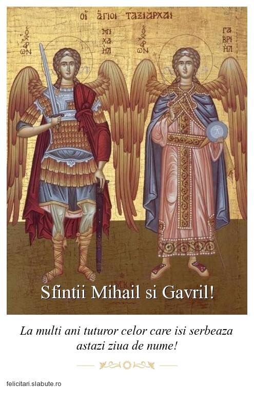 Poza felicitare Sfintii Mihail si Gavril!