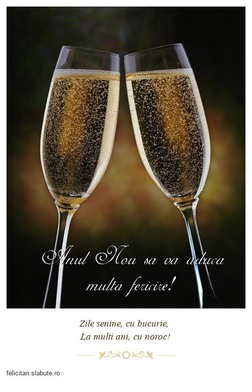 Anul Nou sa va aduca multa fericire!