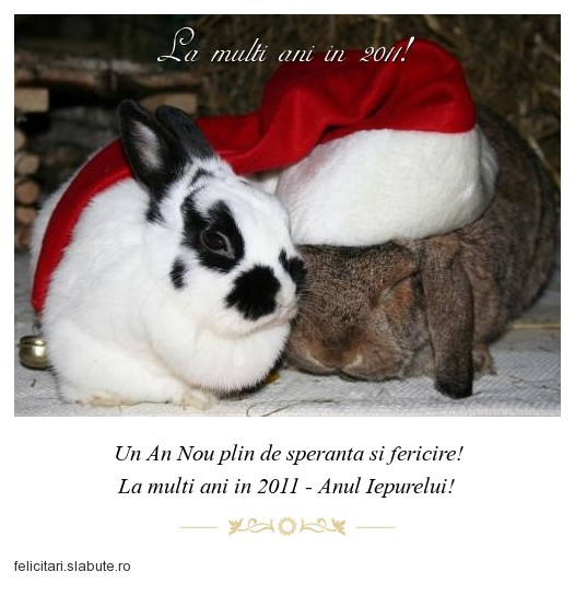 Poza felicitare La multi ani in 2011!