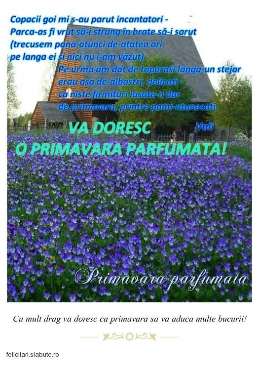 Poza felicitare Primavara parfumata