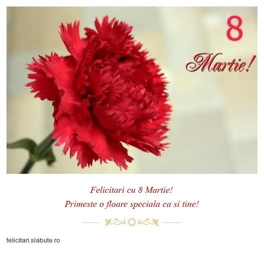 Poza felicitare Martie!