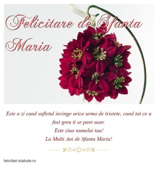 Poza felicitare Felicitare de Sfanta Maria
