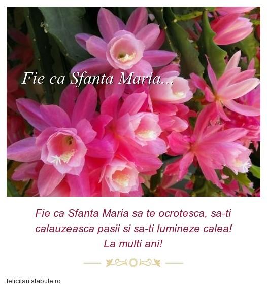 Poza felicitare Fie ca Sfanta Maria...