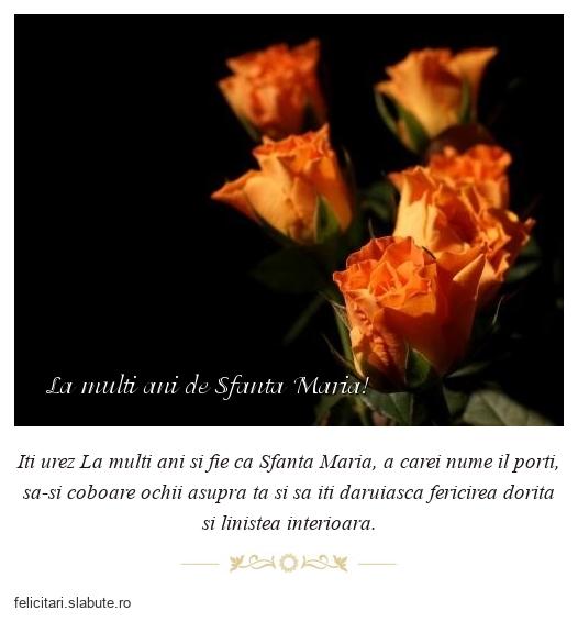 La multi ani de Sfanta Maria!