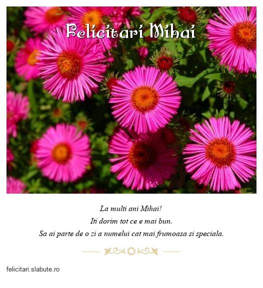 Felicitari Mihai