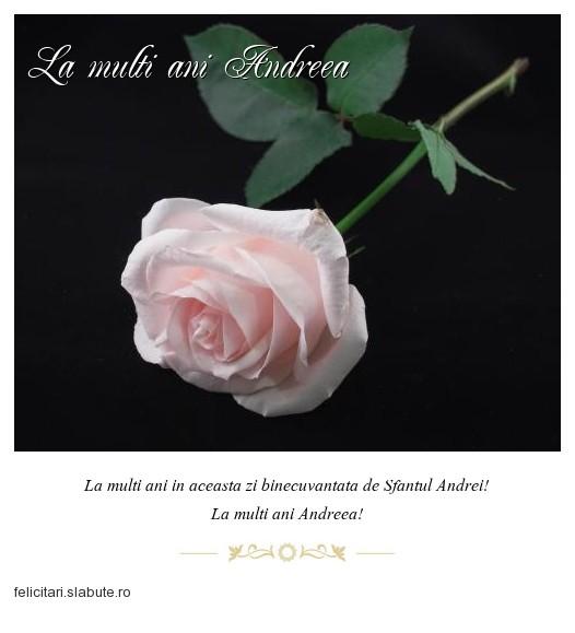 Poza felicitare La multi ani Andreea