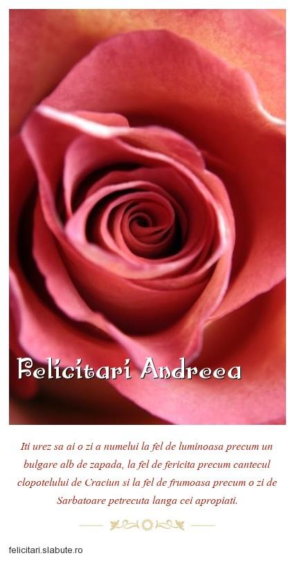 Poza felicitare Felicitari Andreea