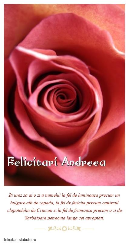 Felicitari Andreea